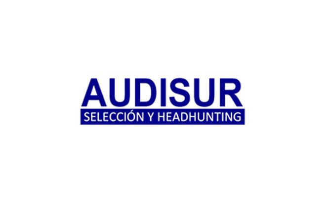 Audisur Auditores