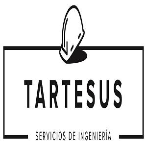 INGENIERIA Y SERVICIOS TARTESUS, S.L